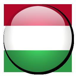 Sudski tumač za mađarski jezik